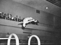 1948_dive framed by fischer bleachers.jpg