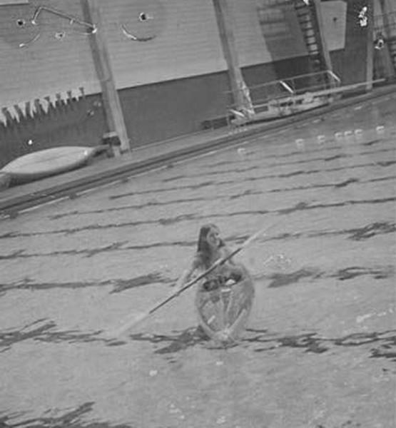 1970s_aquatics2.jpg