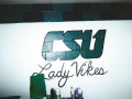 2008-Lady Vikes Locker.jpg