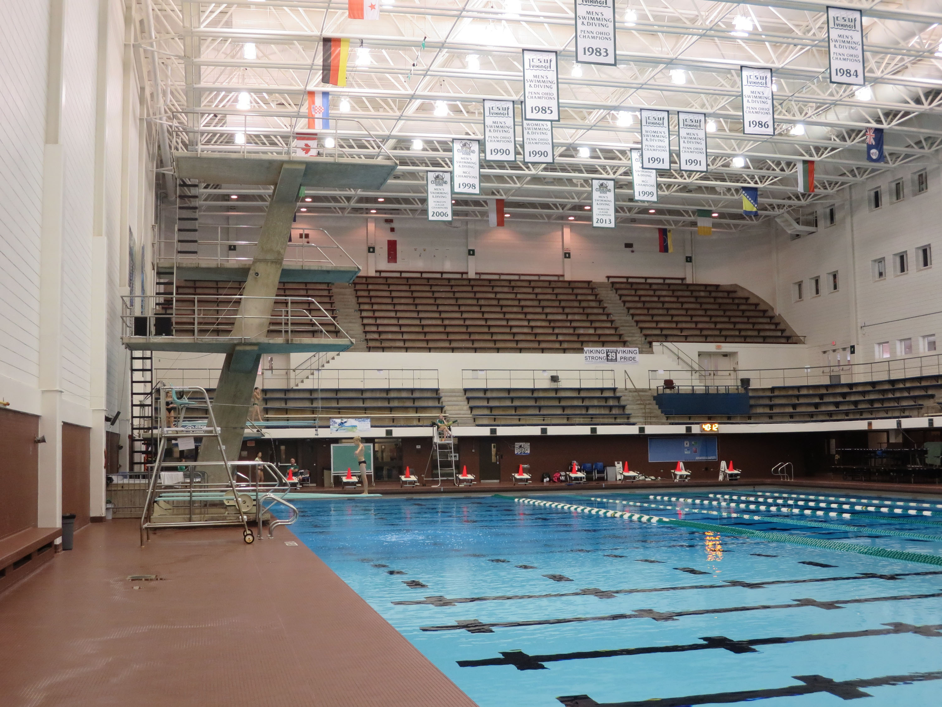 Csu Swimming Diving Heritage Graphics Concepts Sept 2014