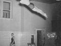 1940_diving.jpg