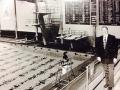 1980-Busbey-framed by pool.jpg